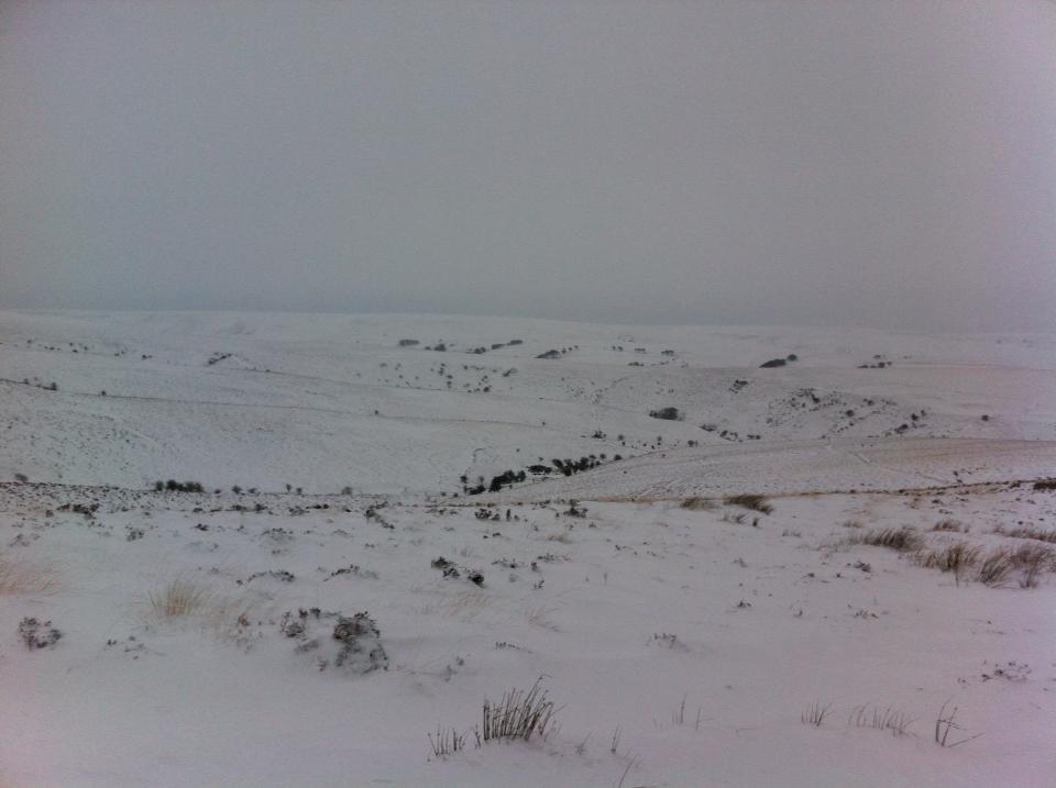 cheriton ridge snow