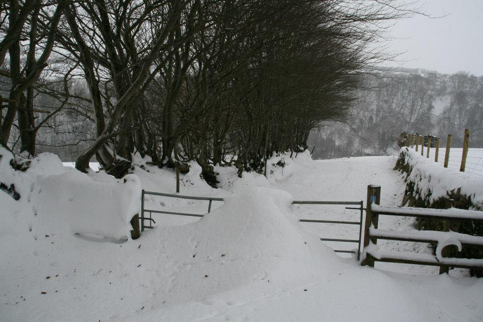 lane snow