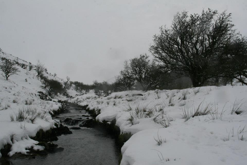 pool snow2