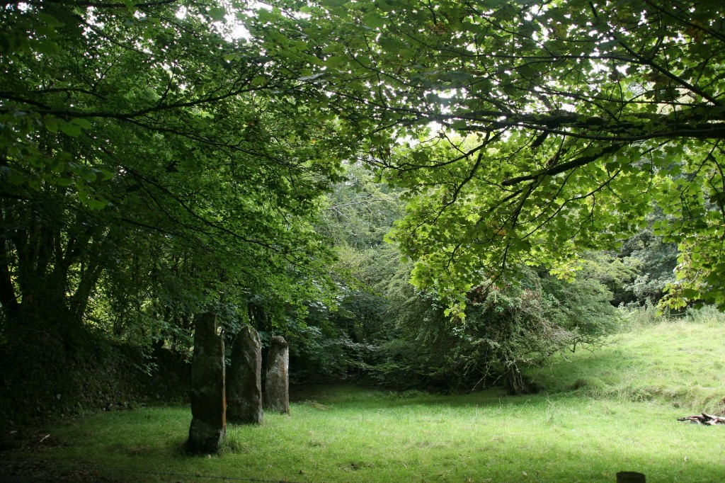 Standing stones at Lyncombe