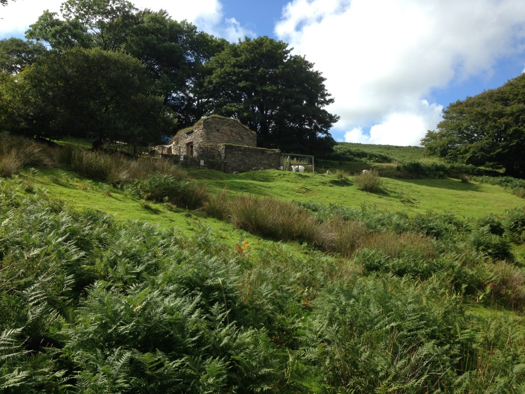 Hoaroak Cottage